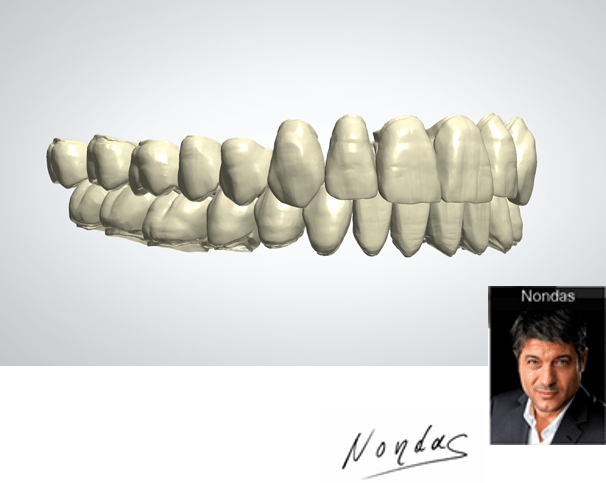 Esthetic and functional morphology design libraries